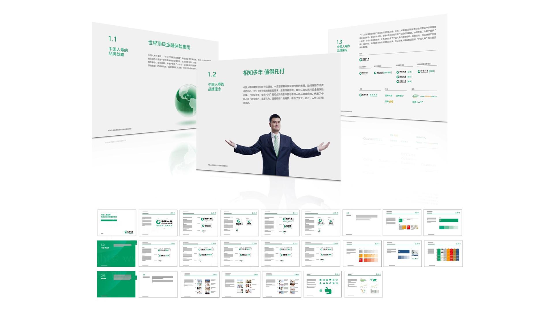 中国人寿保险公司SI设计