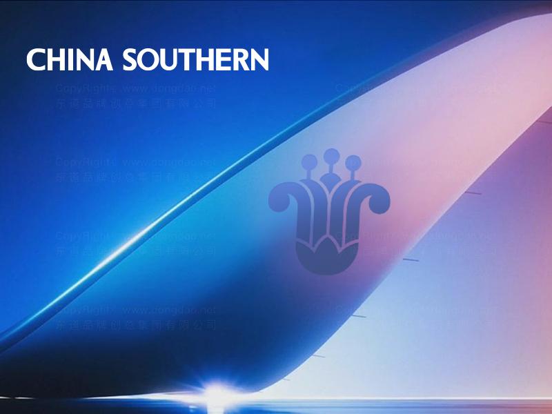 航空公司vi设计应用场景_30