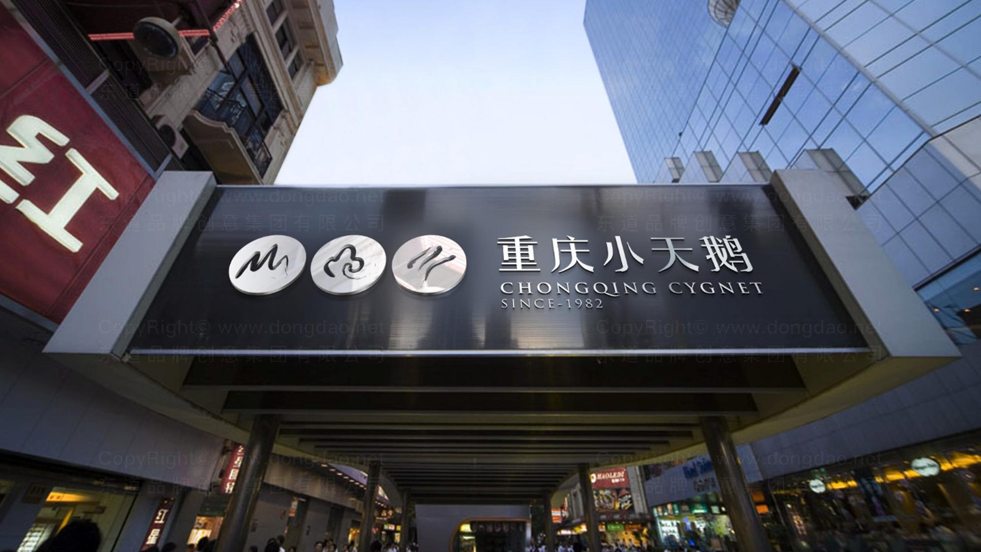 品牌设计重庆小天鹅LOGO&VI设计应用场景_9