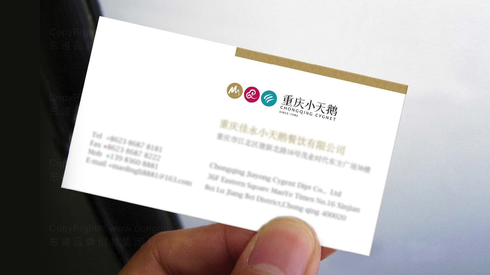 品牌设计重庆小天鹅LOGO&VI设计应用场景