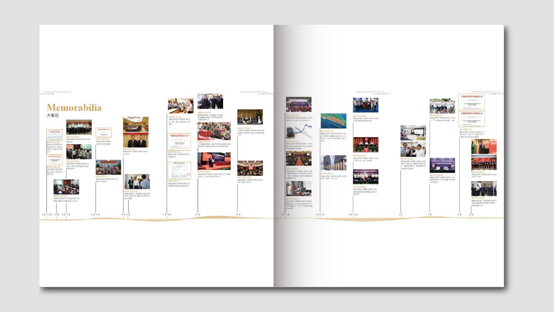 视觉传达海峡金桥保险一周年画册设计应用场景_2