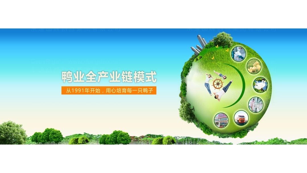 品牌战略&企业文化华英农业品牌战略规划应用场景