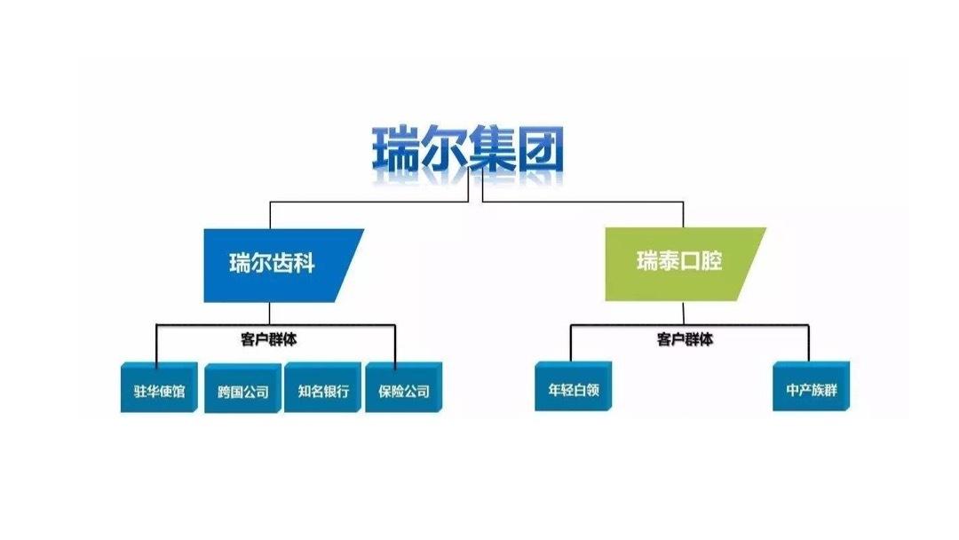制药医疗品牌战略&企业文化瑞尔ARRAIL品牌战略规划