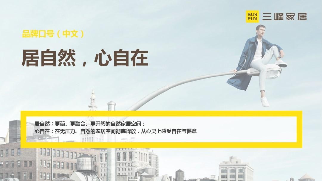 三峰家居品牌策略规划应用场景_2