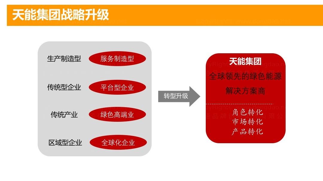 品牌战略&企业文化天能电池品牌管理规划应用