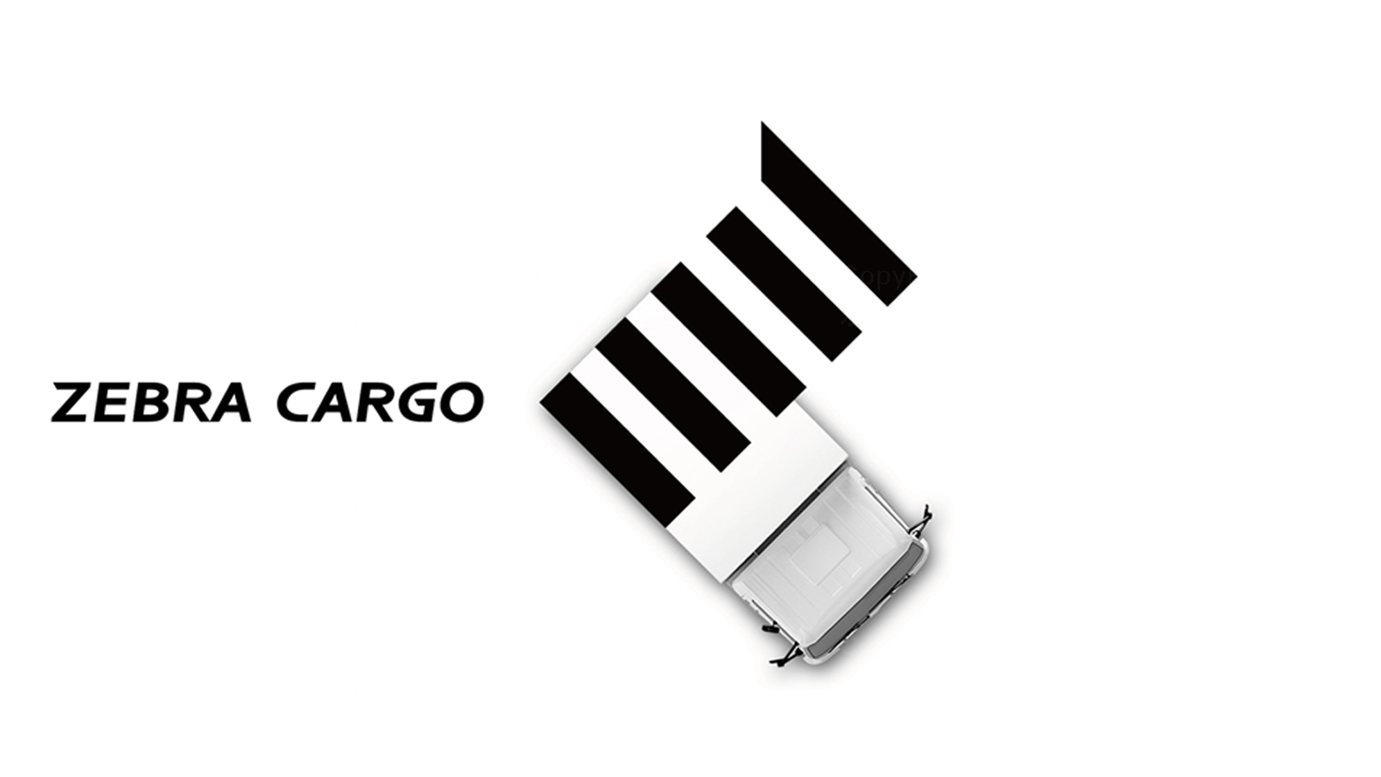 品牌设计斑马来拉LOGO&VI设计应用场景