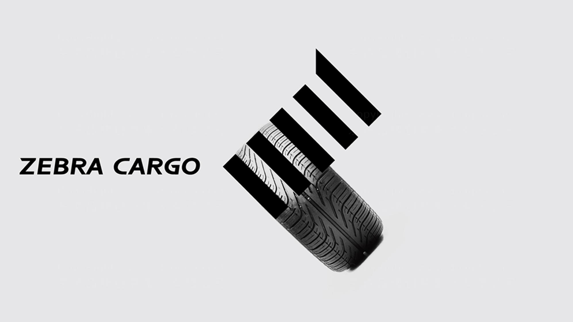 品牌设计斑马来拉LOGO&VI设计应用场景_1