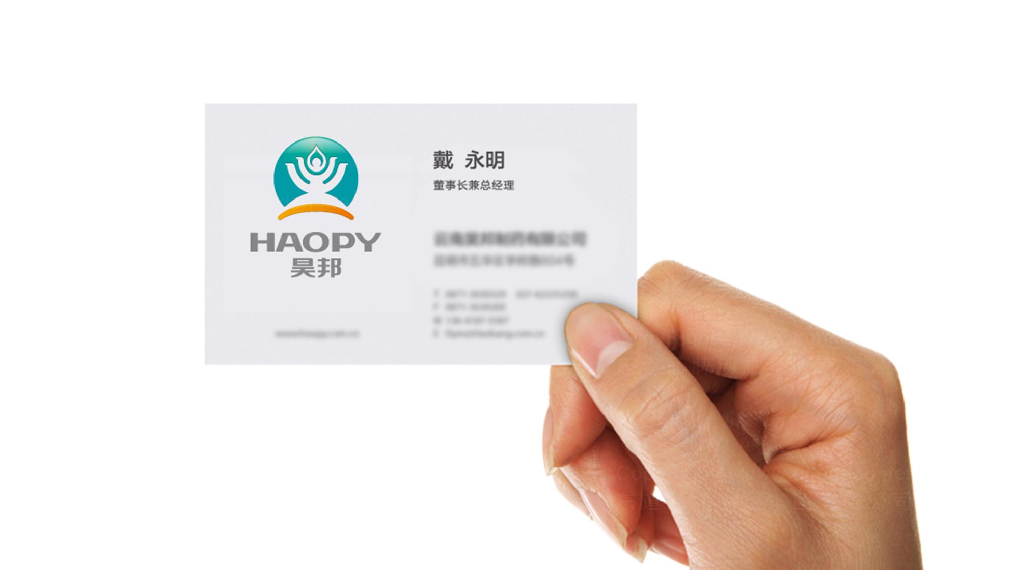 品牌设计昊邦医药LOGO&VI设计应用场景_1