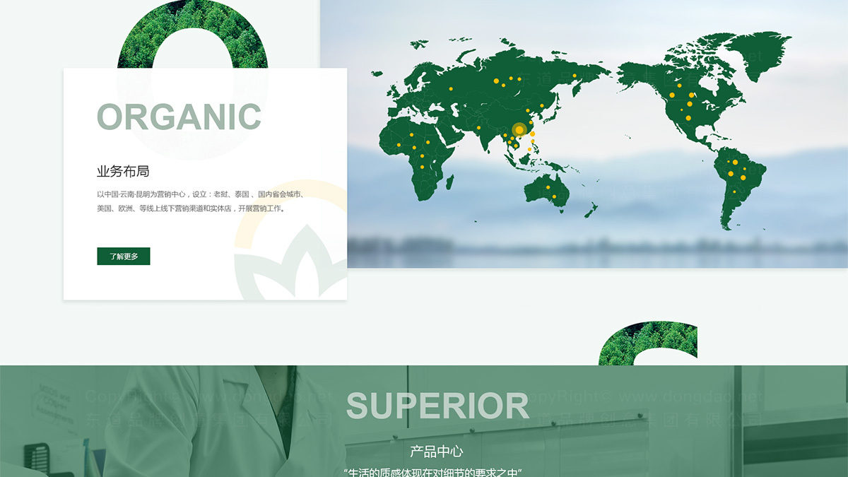 其他东道数字中胶永生网站设计