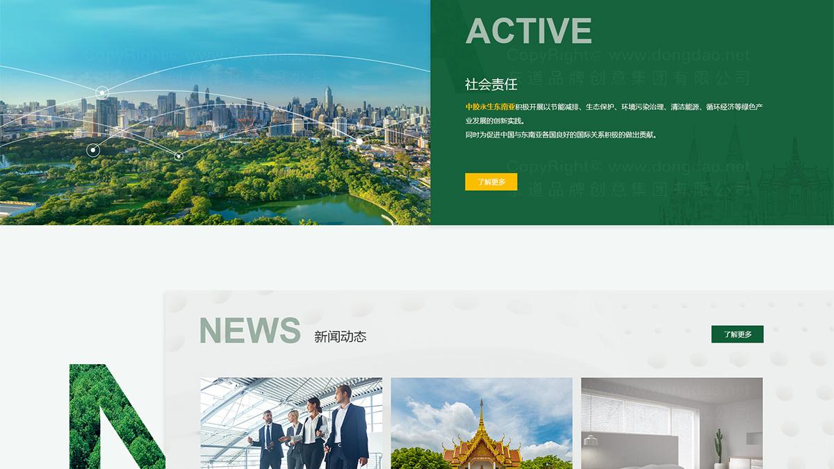 东道数字中胶永生网站设计应用