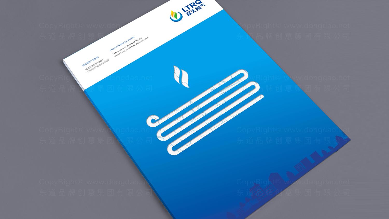 视觉传达案例蓝天燃气画册设计