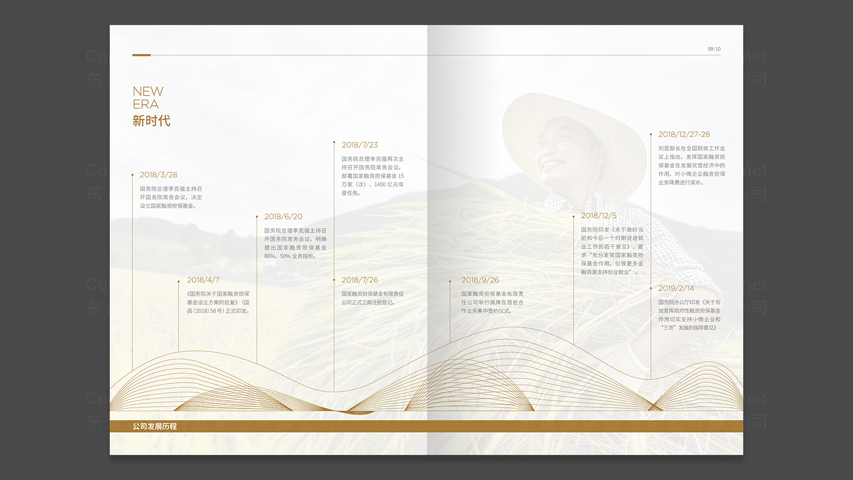 视觉传达国家融资担保画册设计应用场景_3