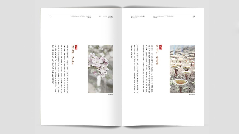 视觉传达山东京博画册设计应用场景_3