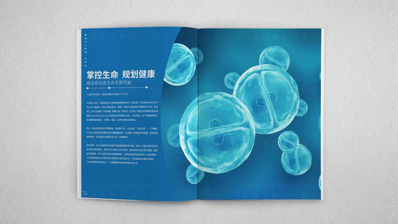 视觉传达爱姆斯坦画册设计应用
