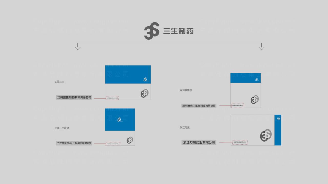 产品包装三生药业体系包装应用场景_12