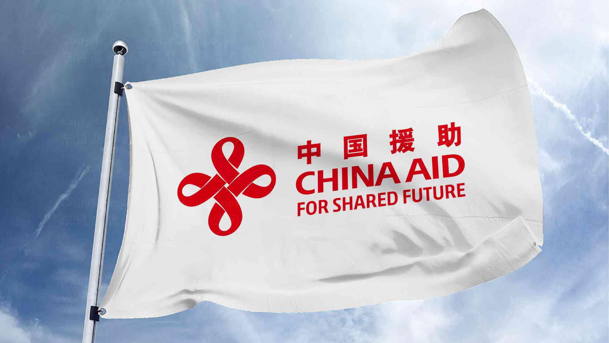 品牌设计案例中国援助LOGOVI设计