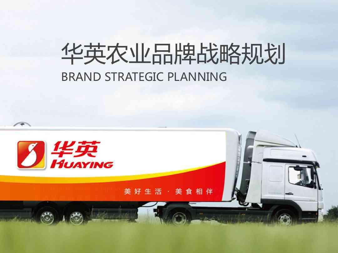 品牌战略&企业文化品牌战略规划华英农业品牌战略&企业文化方案