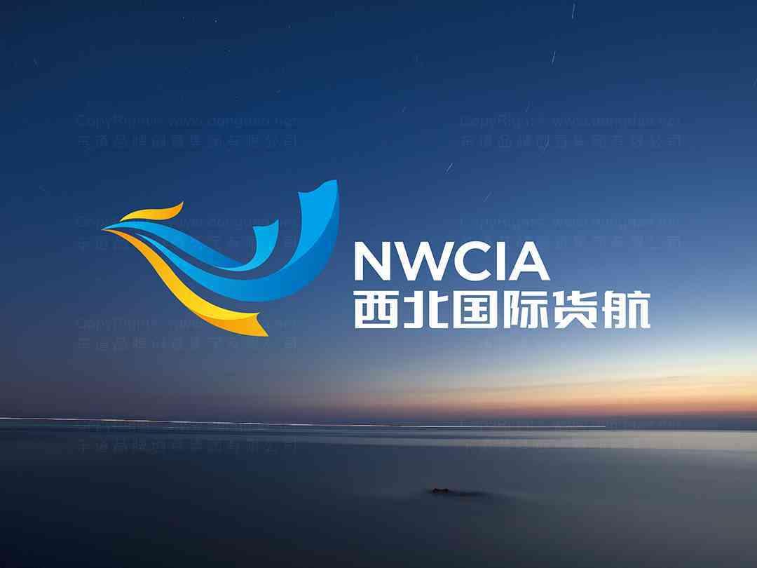 品牌设计logo设计、vi设计西北国际货运航空品牌设计方案