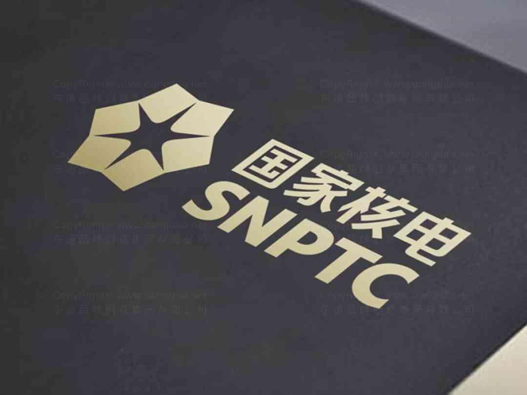 国家核电标志设计