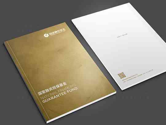 融资机构画册设计