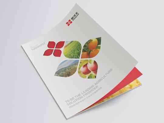 视觉传达画册设计新洋丰肥业视觉传达方案